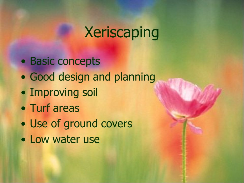 Xeriscaping Basic concepts Good design and planning Improving soil Turf areas Use of ground covers Low water use