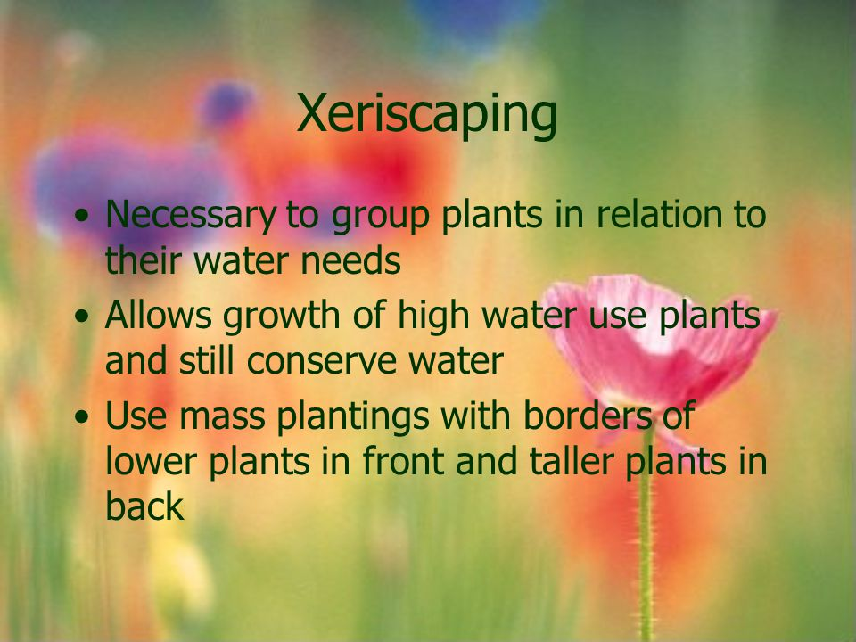 Necessary to group plants in relation to their water needs Allows growth of high water use plants and still conserve water Use mass plantings with bor