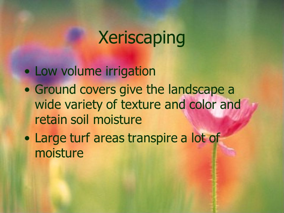Xeriscaping Low volume irrigation Ground covers give the landscape a wide variety of texture and color and retain soil moisture Large turf areas trans