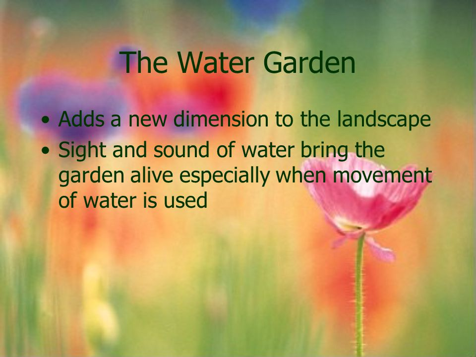 The Water Garden Adds a new dimension to the landscape Sight and sound of water bring the garden alive especially when movement of water is used