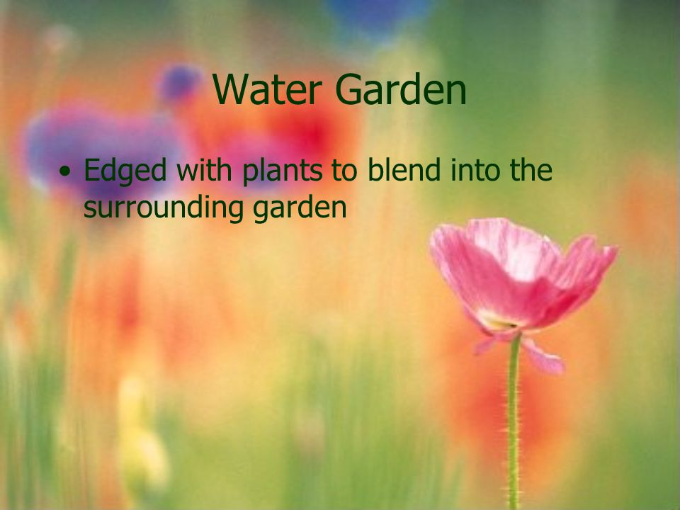 Water Garden Edged with plants to blend into the surrounding garden
