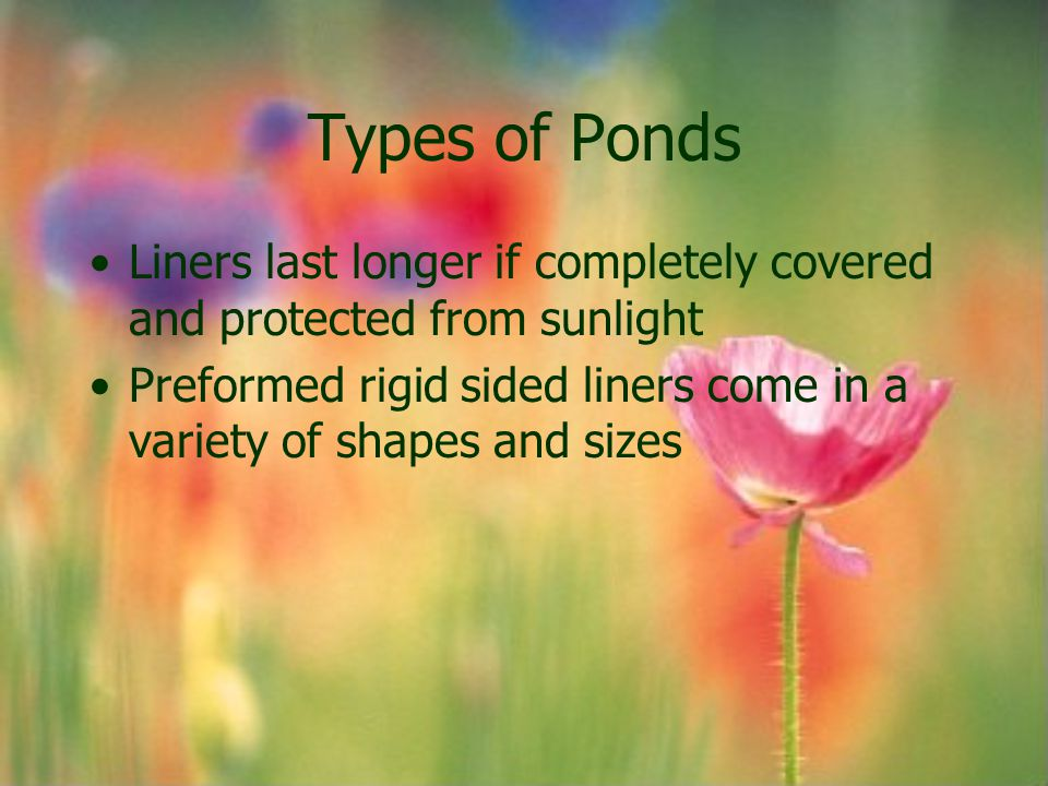 Types of Ponds Liners last longer if completely covered and protected from sunlight Preformed rigid sided liners come in a variety of shapes and sizes