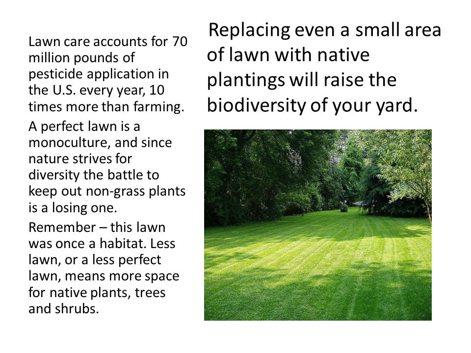 Replacing even a small area of lawn with native plantings will raise the biodiversity of your yard. Lawn care accounts for 70 million pounds of pestic