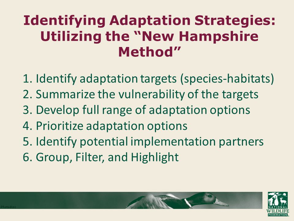 Identifying Adaptation Strategies: Utilizing the New Hampshire Method 1.