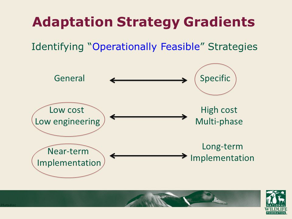 Adaptation Strategy Gradients GeneralSpecific Low cost Low engineering High cost Multi-phase Long-term Implementation Near-term Implementation Identifying Operationally Feasible Strategies