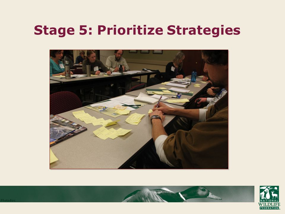 Stage 5: Prioritize Strategies