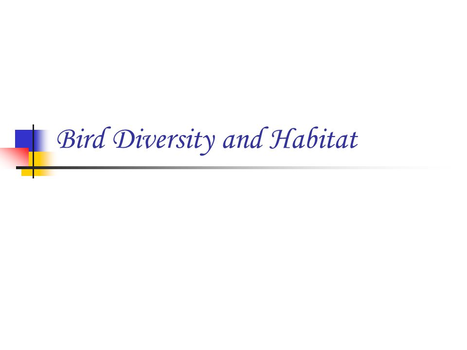 Bird Diversity and Habitat