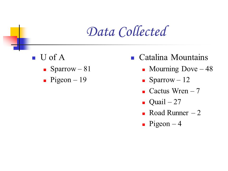 Data Collected U of A Sparrow – 81 Pigeon – 19 Catalina Mountains Mourning Dove – 48 Sparrow – 12 Cactus Wren – 7 Quail – 27 Road Runner – 2 Pigeon – 4