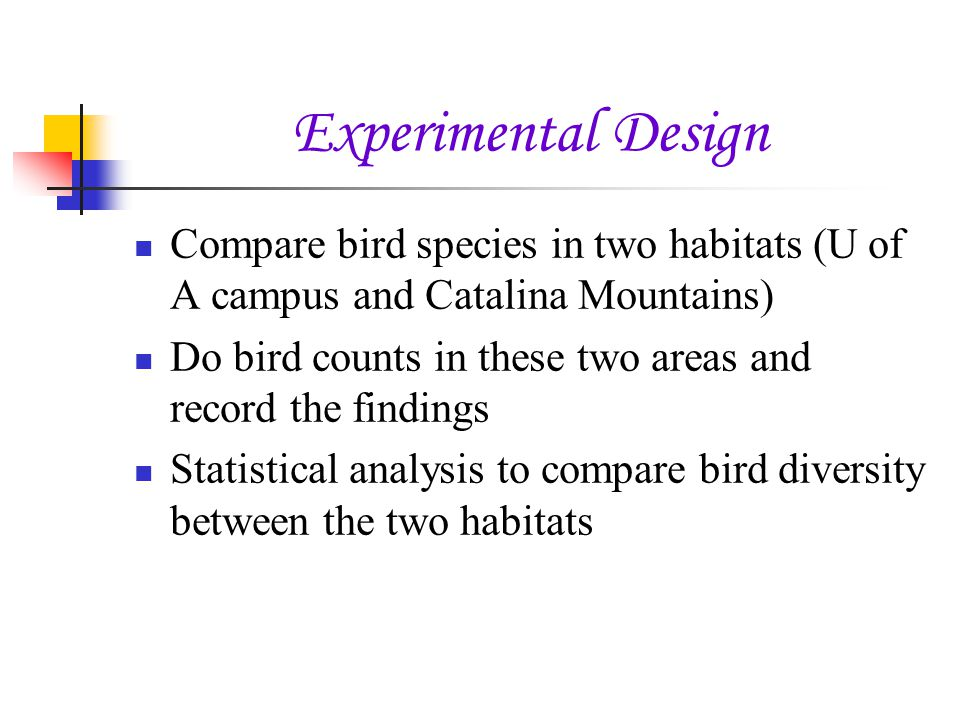 Experimental Design Compare bird species in two habitats (U of A campus and Catalina Mountains) Do bird counts in these two areas and record the findings Statistical analysis to compare bird diversity between the two habitats