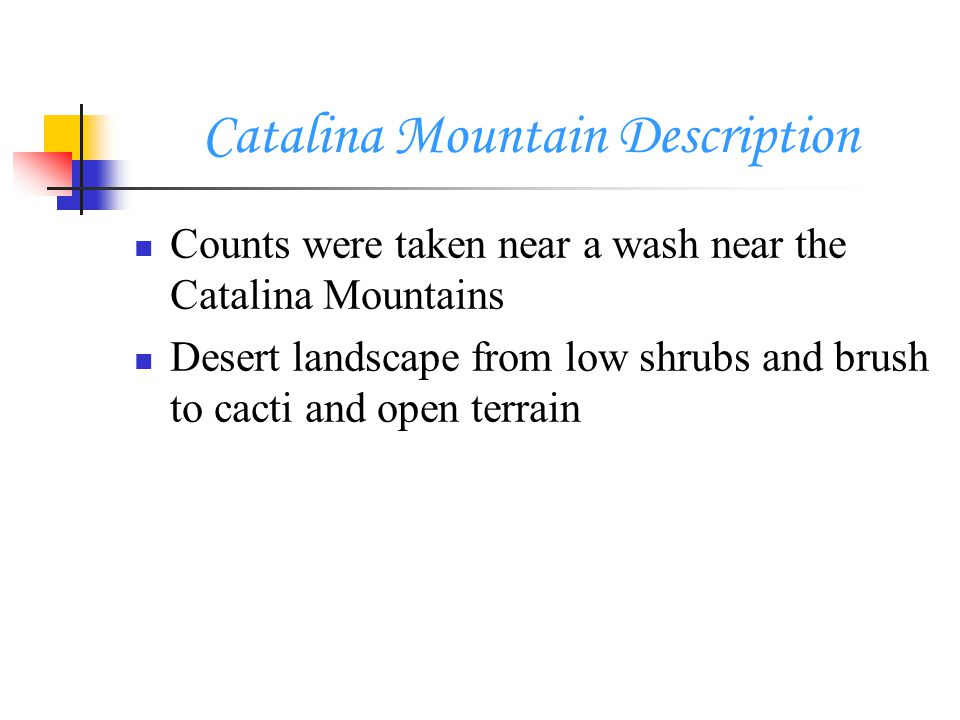 Catalina Mountain Description Counts were taken near a wash near the Catalina Mountains Desert landscape from low shrubs and brush to cacti and open terrain
