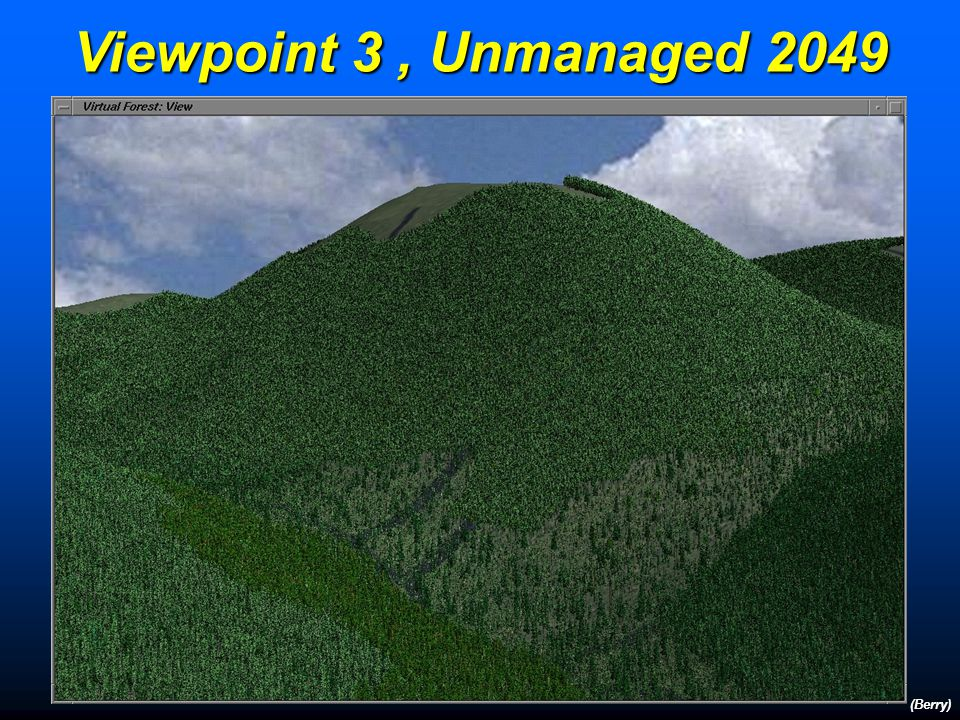 Viewpoint 3, Initial Conditions 1999 (Berry)