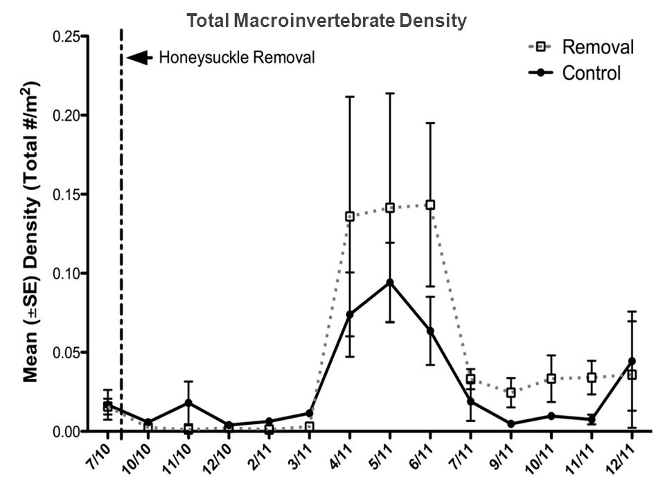 Total Macroinvertebrate Density