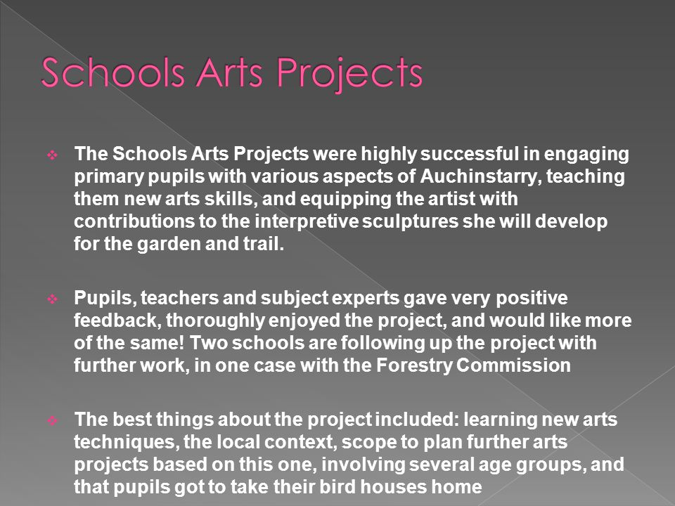  The Schools Arts Projects were highly successful in engaging primary pupils with various aspects of Auchinstarry, teaching them new arts skills, and equipping the artist with contributions to the interpretive sculptures she will develop for the garden and trail.