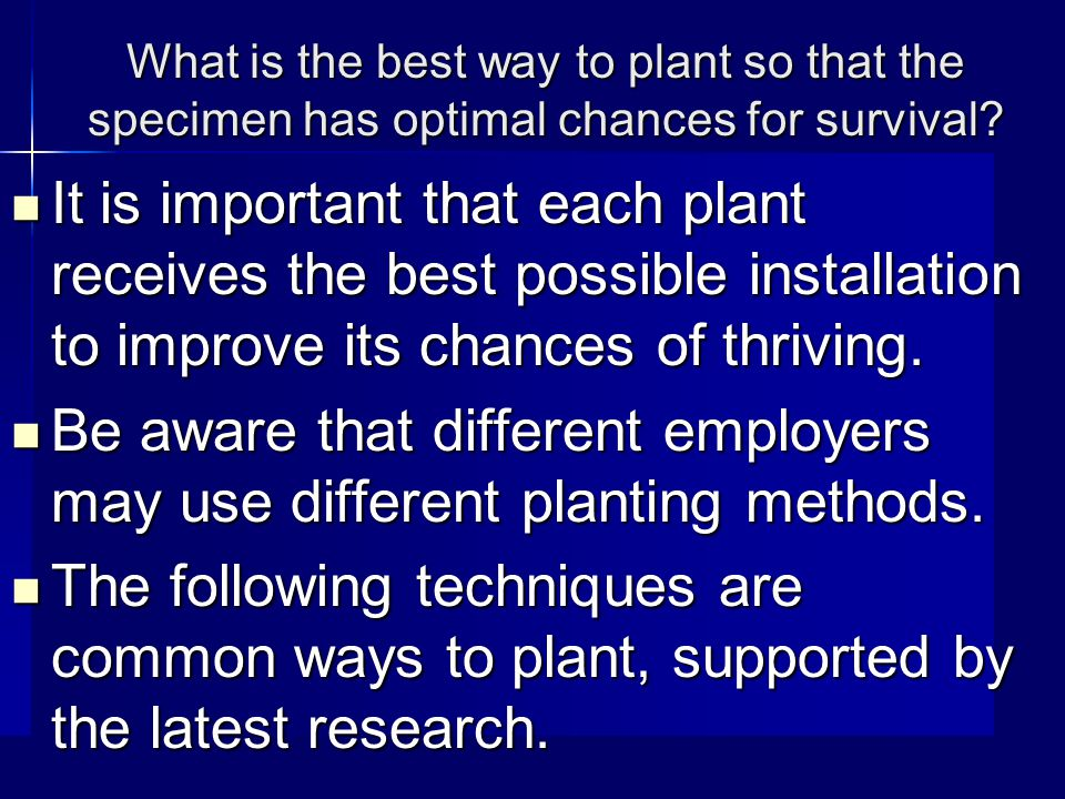What is the best way to plant so that the specimen has optimal chances for survival.