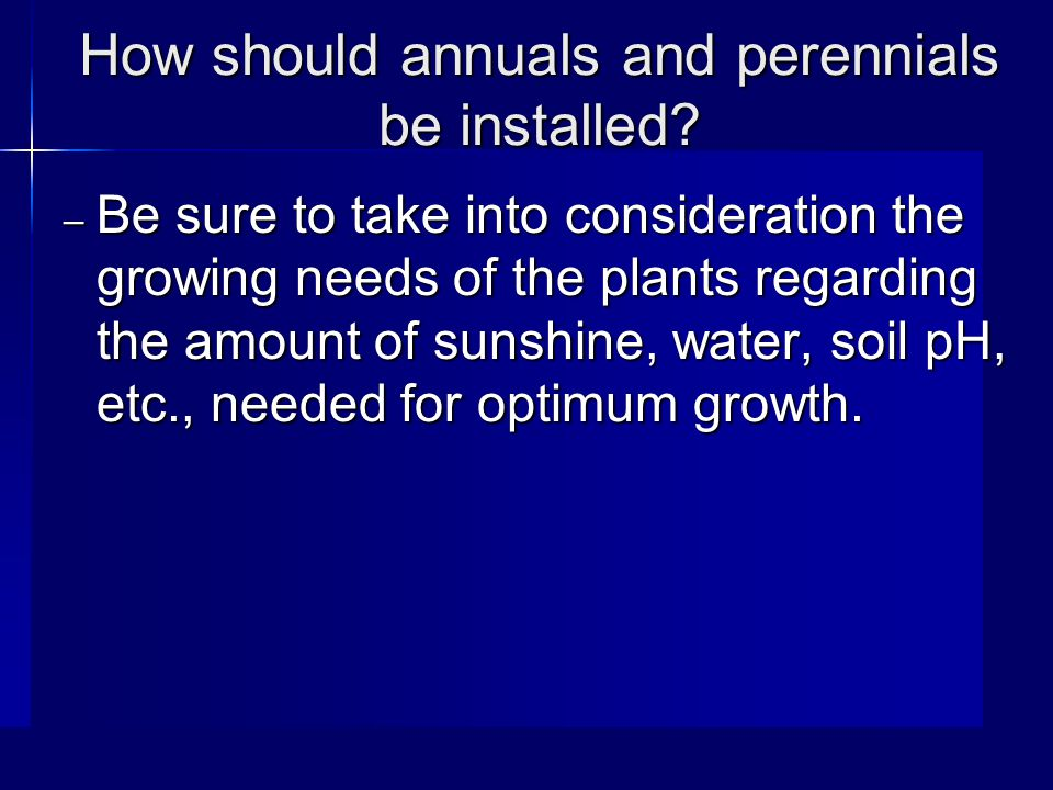 How should annuals and perennials be installed.