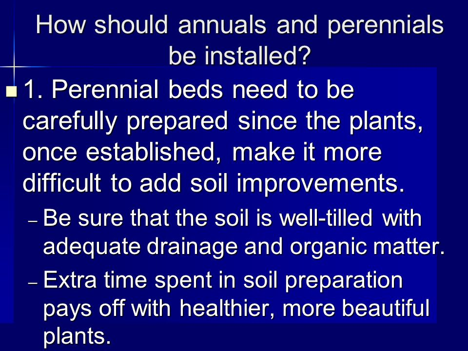 How should annuals and perennials be installed. 1.