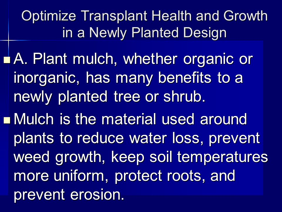 Optimize Transplant Health and Growth in a Newly Planted Design A.