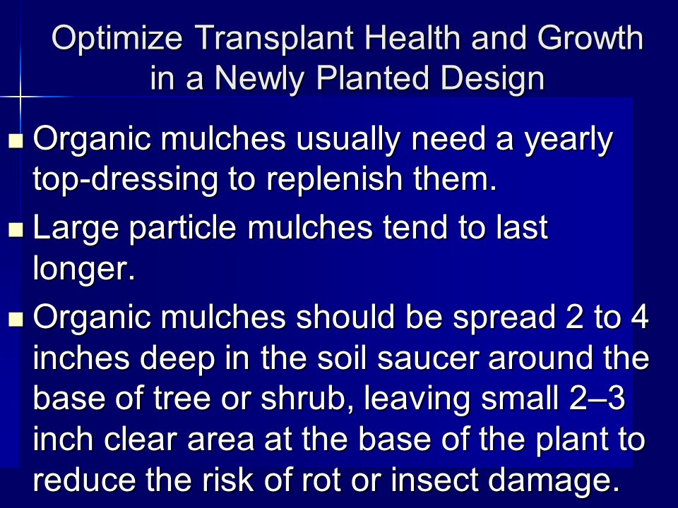 Optimize Transplant Health and Growth in a Newly Planted Design Organic mulches usually need a yearly top-dressing to replenish them.