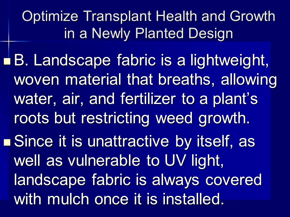 Optimize Transplant Health and Growth in a Newly Planted Design B.
