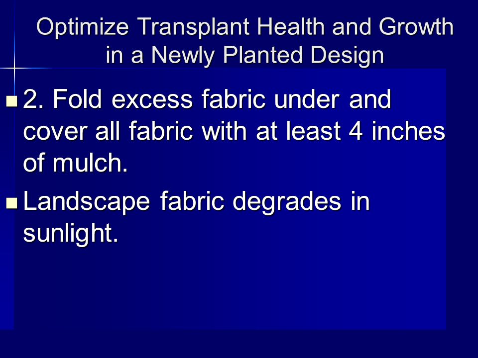 Optimize Transplant Health and Growth in a Newly Planted Design 2.