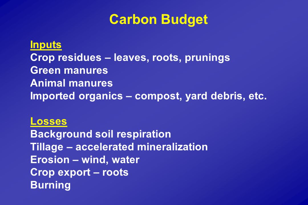 Carbon Budget Inputs Crop residues – leaves, roots, prunings Green manures Animal manures Imported organics – compost, yard debris, etc.