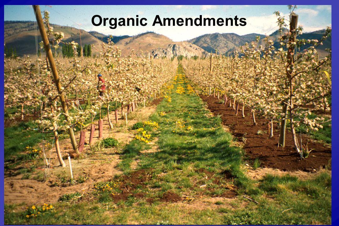 Organic Amendments