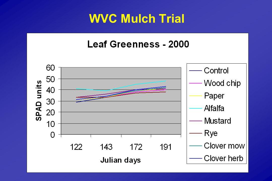 WVC Mulch Trial