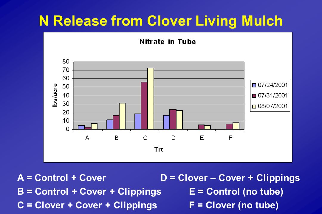 N Release from Clover Living Mulch A = Control + CoverD = Clover – Cover + Clippings B = Control + Cover + ClippingsE = Control (no tube) C = Clover + Cover + ClippingsF = Clover (no tube)