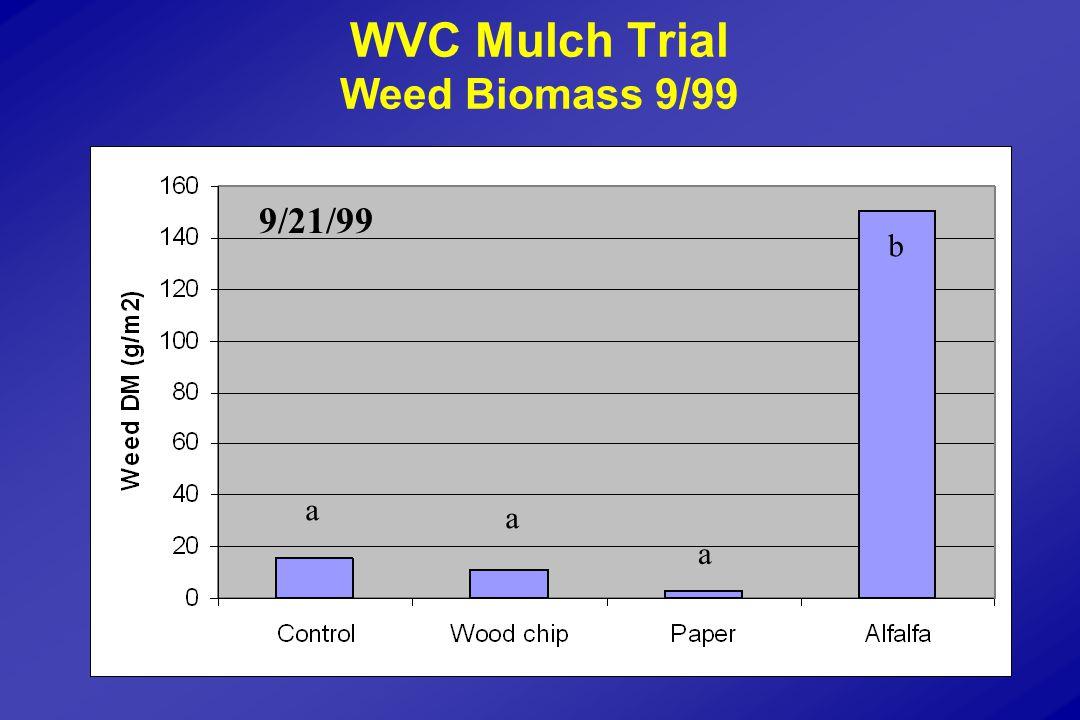 WVC Mulch Trial Weed Biomass 9/99 a a a b 9/21/99