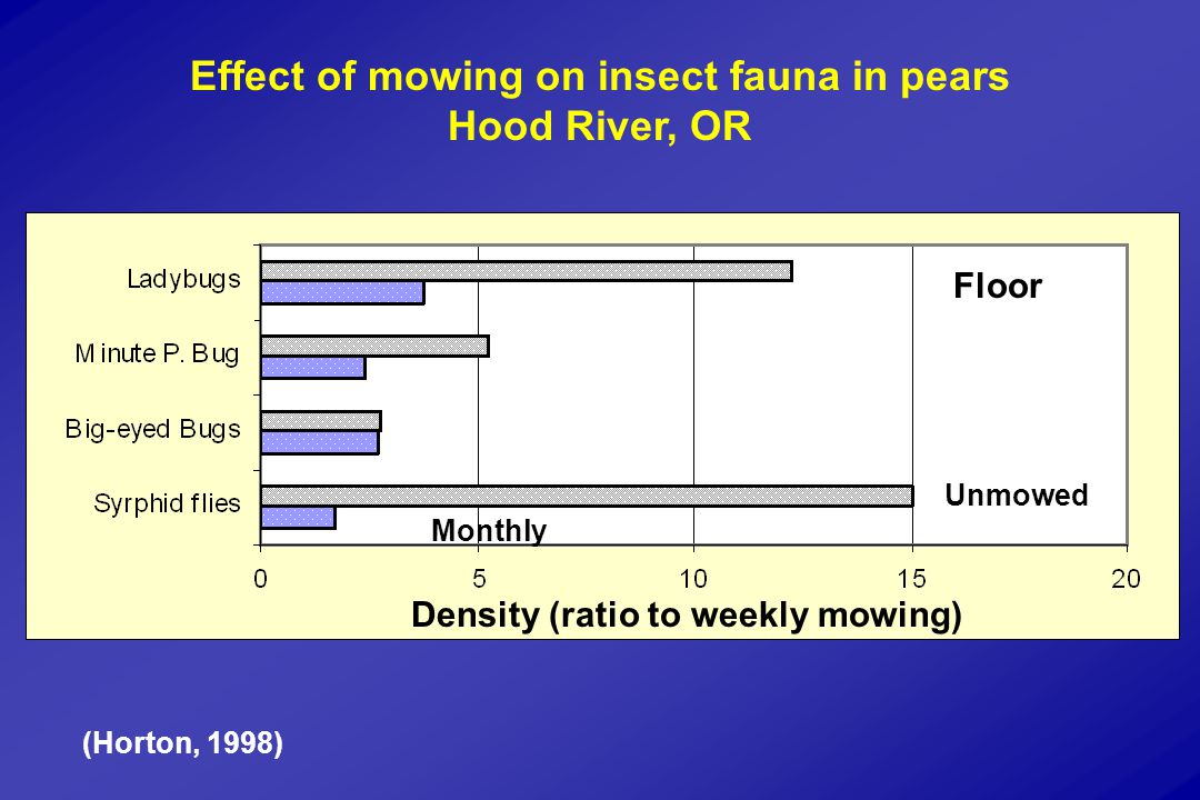 Effect of mowing on insect fauna in pears Hood River, OR Monthly Unmowed Density (ratio to weekly mowing) Floor (Horton, 1998)