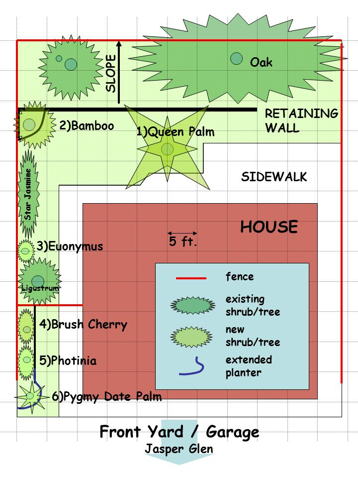 HOUSE SIDEWALK RETAINING WALL SLOPE 1)Queen Palm 3)Euonymus 2)Bamboo 4)Brush Cherry 5)Photinia 6)Pygmy Date Palm fence existing shrub/tree new shrub/tree 5 ft.