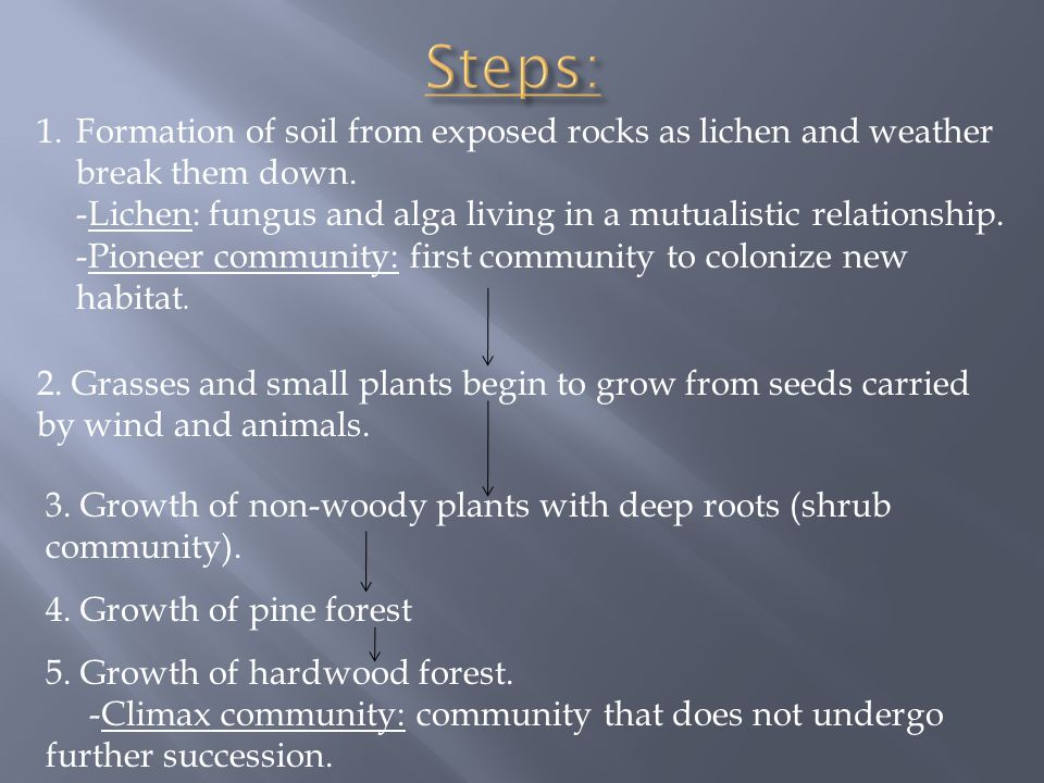1.Formation of soil from exposed rocks as lichen and weather break them down.