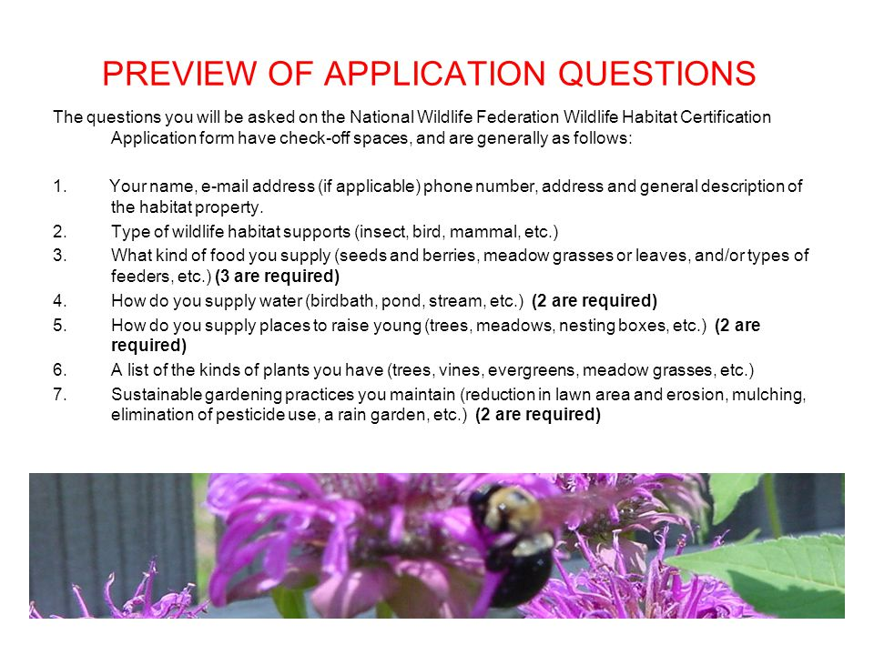PREVIEW OF APPLICATION QUESTIONS The questions you will be asked on the National Wildlife Federation Wildlife Habitat Certification Application form have check-off spaces, and are generally as follows: 1.