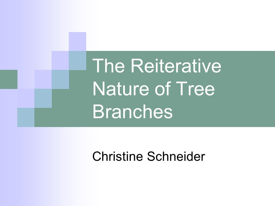 The Reiterative Nature of Tree Branches Christine Schneider