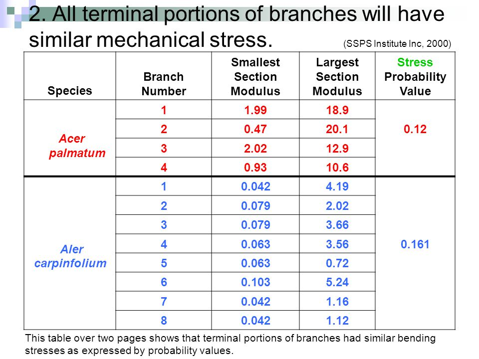 2. All terminal portions of branches will have similar mechanical stress. (SSPS Institute Inc, 2000) Species Branch Number Smallest Section Modulus La