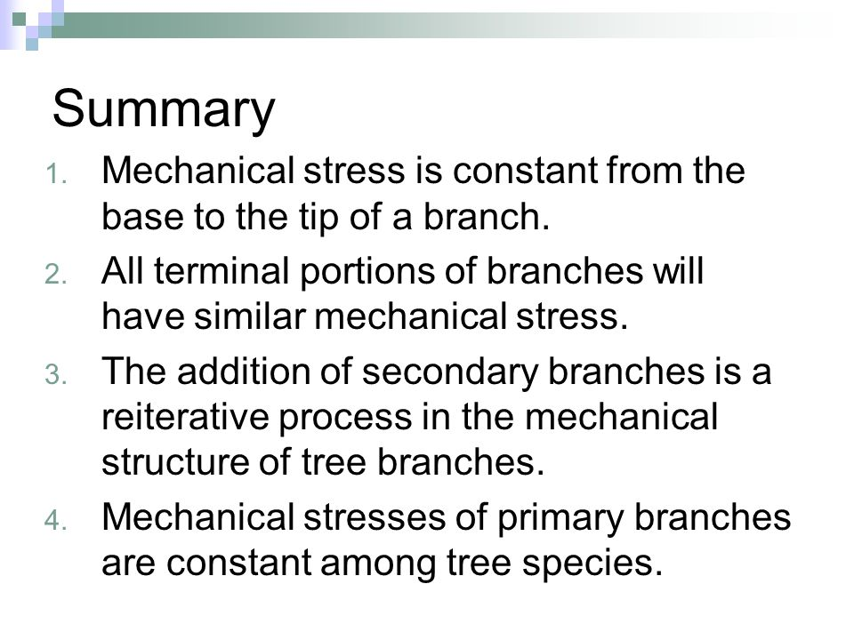 Summary 1. Mechanical stress is constant from the base to the tip of a branch. 2. All terminal portions of branches will have similar mechanical stres