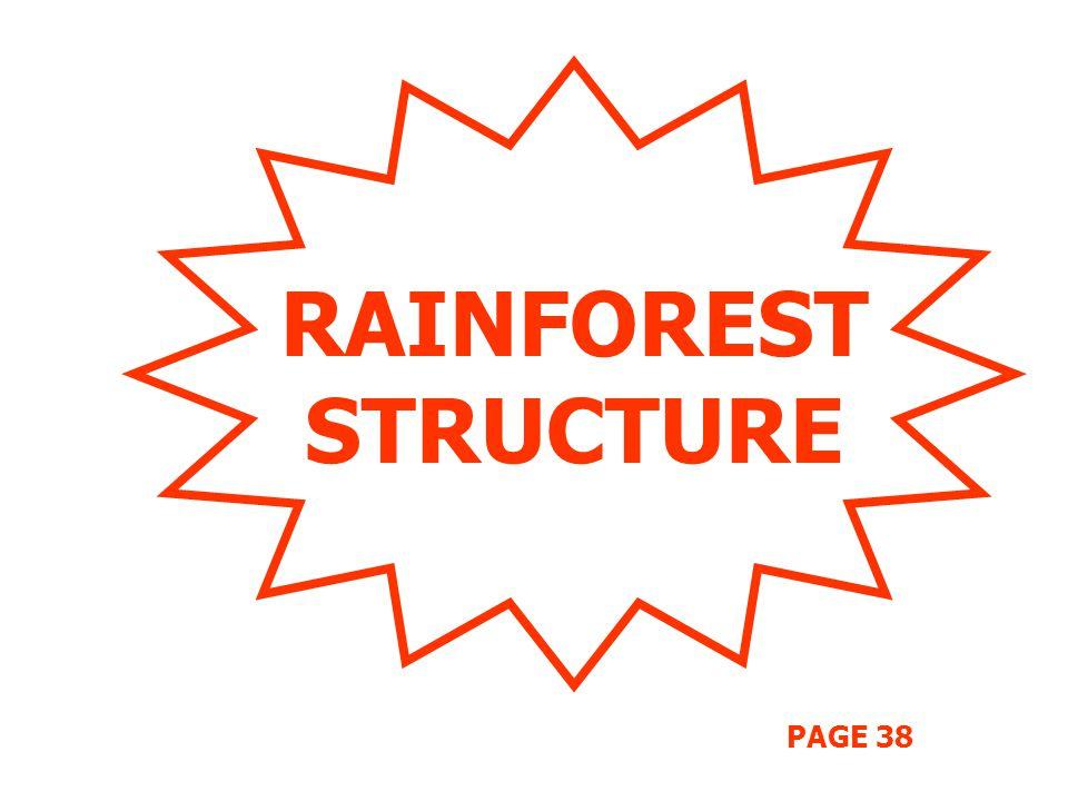 RAINFOREST STRUCTURE PAGE 38