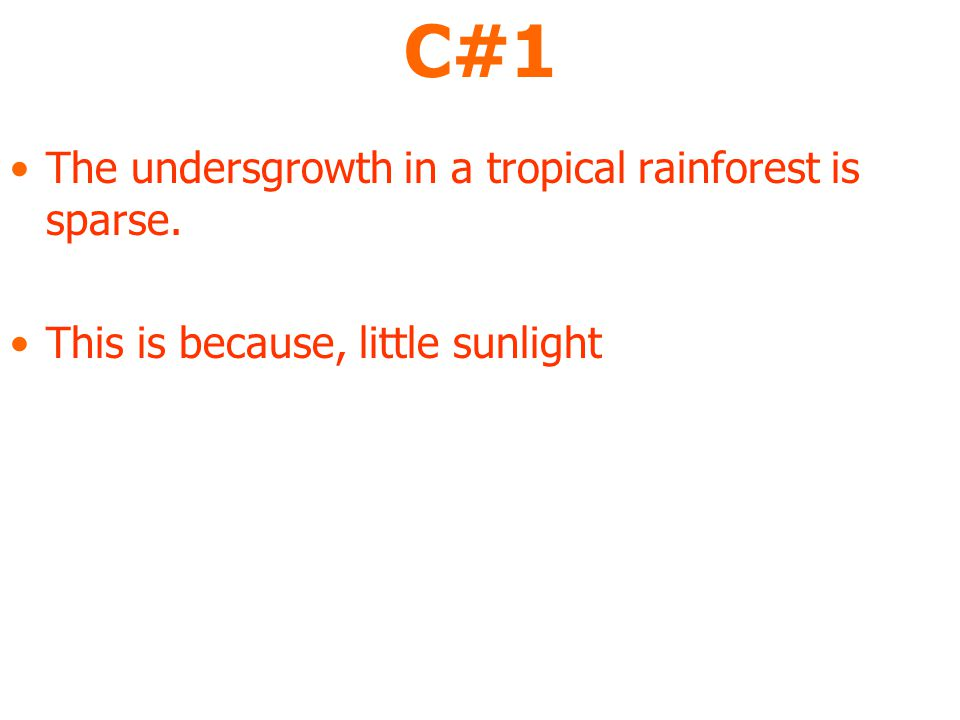C#1 The undersgrowth in a tropical rainforest is sparse. This is because, little sunlight