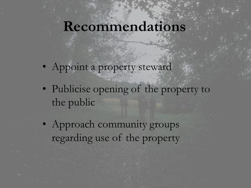Recommendations Appoint a property steward Publicise opening of the property to the public Approach community groups regarding use of the property