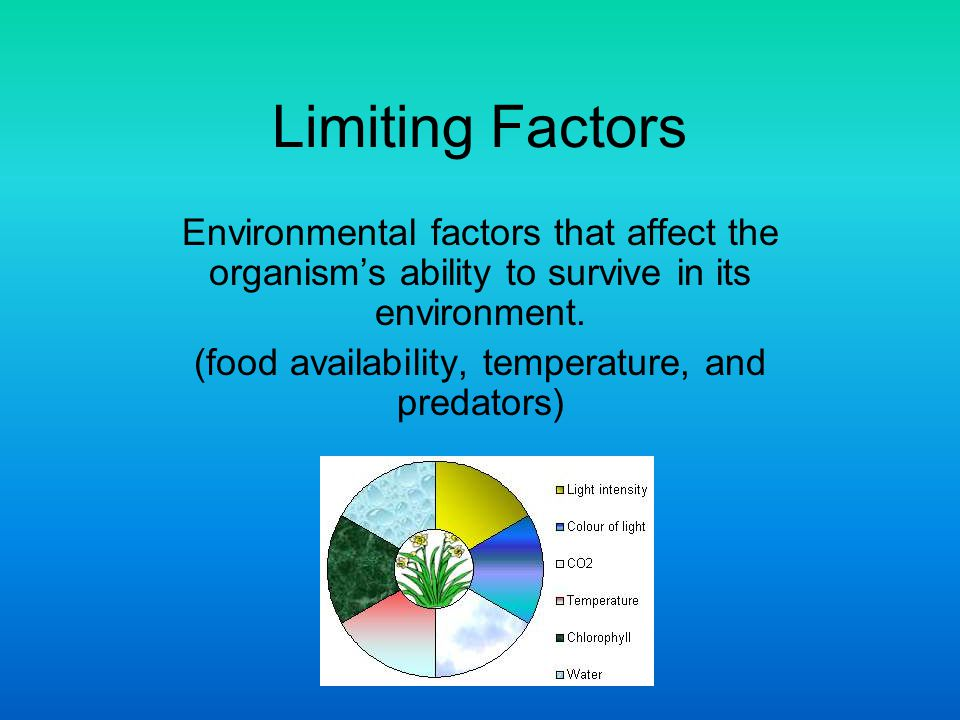 Limiting Factors Environmental factors that affect the organism's ability to survive in its environment. (food availability, temperature, and predator
