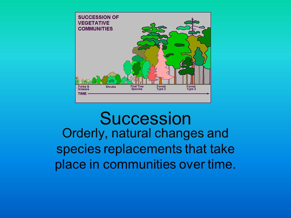 Succession Occur in stages; different species at different stages create conditions that are suitable for some organisms and not suitable for others.