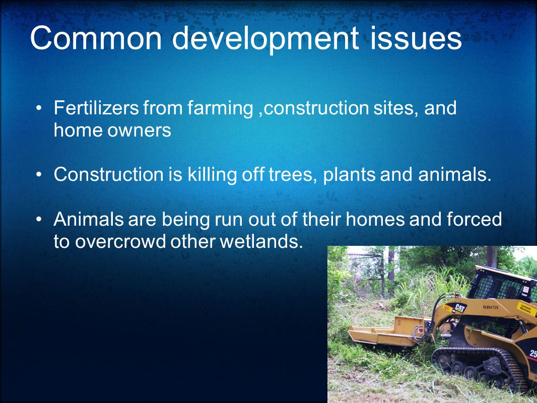 Common development issues Fertilizers from farming,construction sites, and home owners Construction is killing off trees, plants and animals.