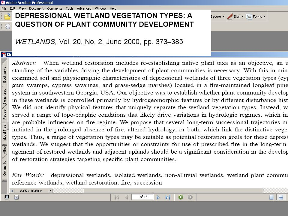 DEPRESSIONAL WETLAND VEGETATION TYPES: A QUESTION OF PLANT COMMUNITY DEVELOPMENT WETLANDS, Vol.