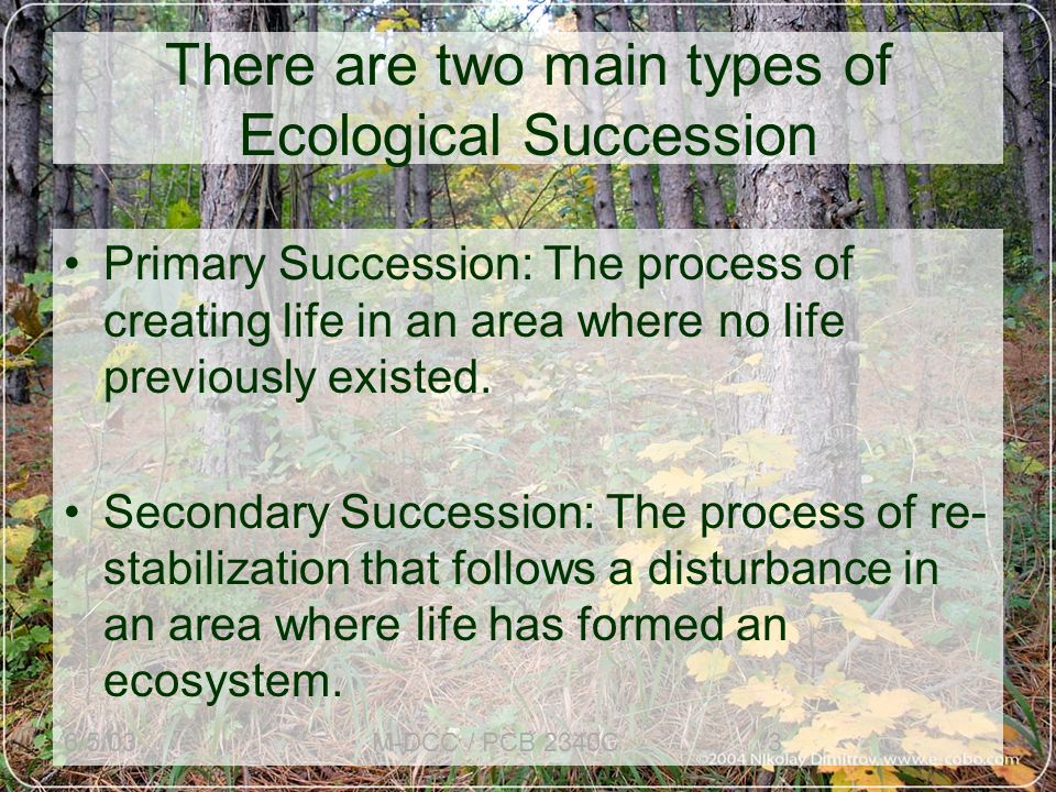 6/5/03M-DCC / PCB 2340C3 There are two main types of Ecological Succession Primary Succession: The process of creating life in an area where no life previously existed.