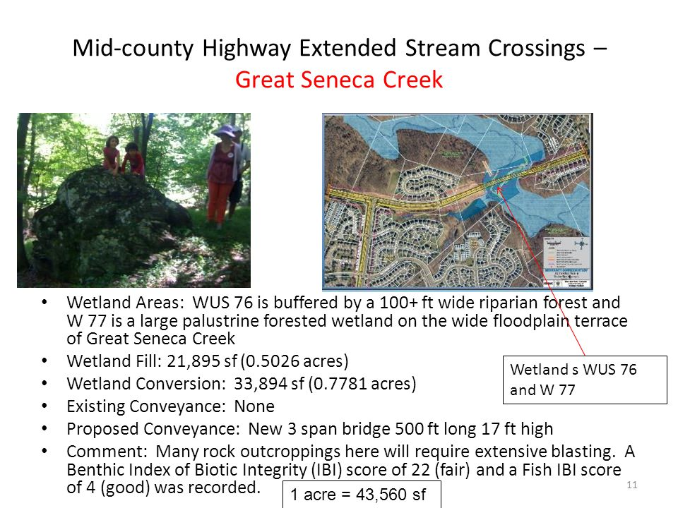 Mid-county Highway Extended Stream Crossings – Great Seneca Creek Wetland Areas: WUS 76 is buffered by a 100+ ft wide riparian forest and W 77 is a large palustrine forested wetland on the wide floodplain terrace of Great Seneca Creek Wetland Fill: 21,895 sf (0.5026 acres) Wetland Conversion: 33,894 sf (0.7781 acres) Existing Conveyance: None Proposed Conveyance: New 3 span bridge 500 ft long 17 ft high Comment: Many rock outcroppings here will require extensive blasting.