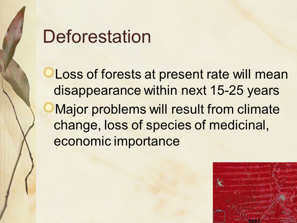 Loss of forests at present rate will mean disappearance within next 15-25 years Major problems will result from climate change, loss of species of medicinal, economic importance