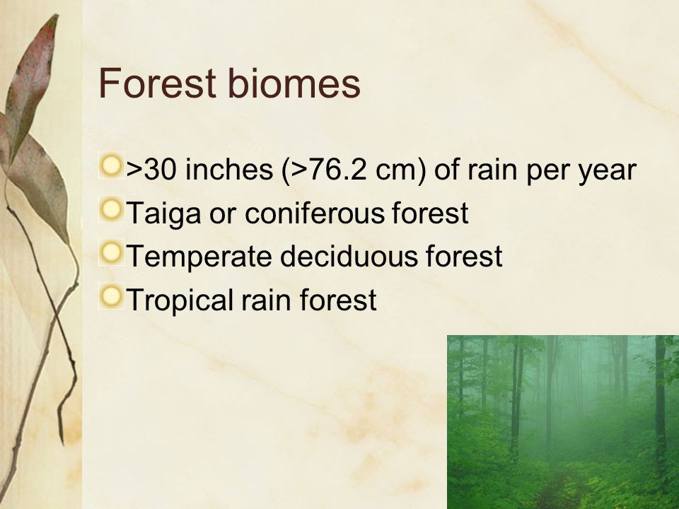 Forest biomes >30 inches (>76.2 cm) of rain per year Taiga or coniferous forest Temperate deciduous forest Tropical rain forest