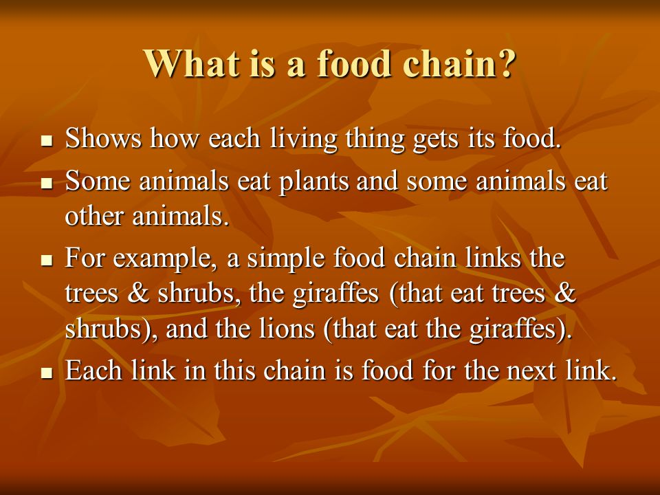 Food Chain vs.