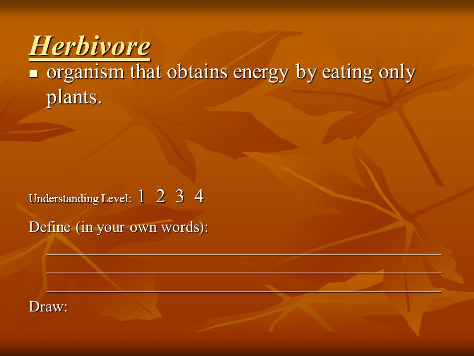 Omnivore organism that obtains energy by eating both plants and animals.