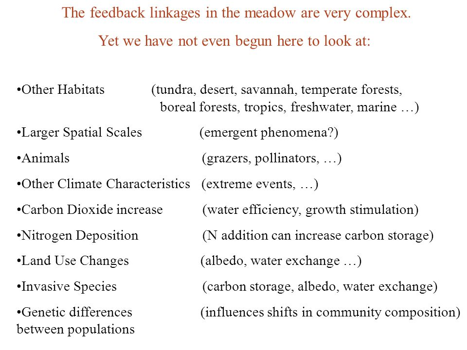 The feedback linkages in the meadow are very complex. Yet we have not even begun here to look at: Other Habitats (tundra, desert, savannah, temperate